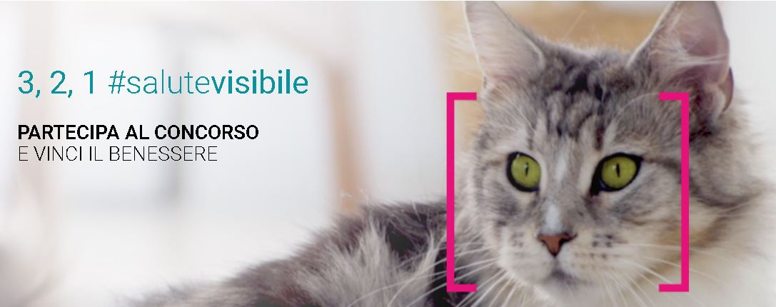 Stampa il buono sconto Purina One e vinci 50 forniture mensili per il tuo gatto.